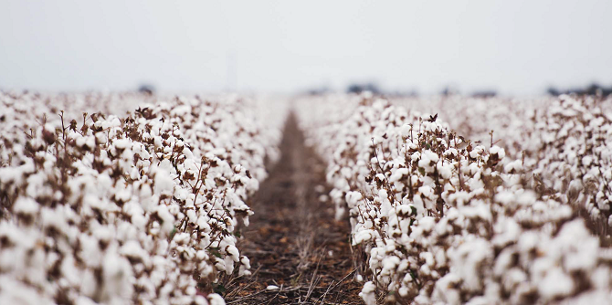 Vision Support Services Cotton Field Linen Supplier Housekeeping News